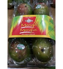Catania Red Mangoes, 6 no.s