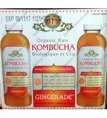 GTS Organic Raw Kombucha, 6 x 473 ml