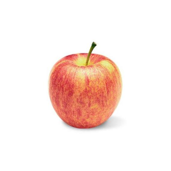 Gala Apple (1 unit)