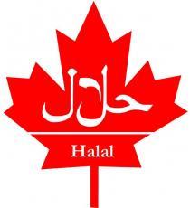 Halal Veau Mince, 1 kg ( /- 50 gr)