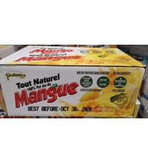 Philippines de Marque Pur Jus de Mangue, 24 x 250 ml