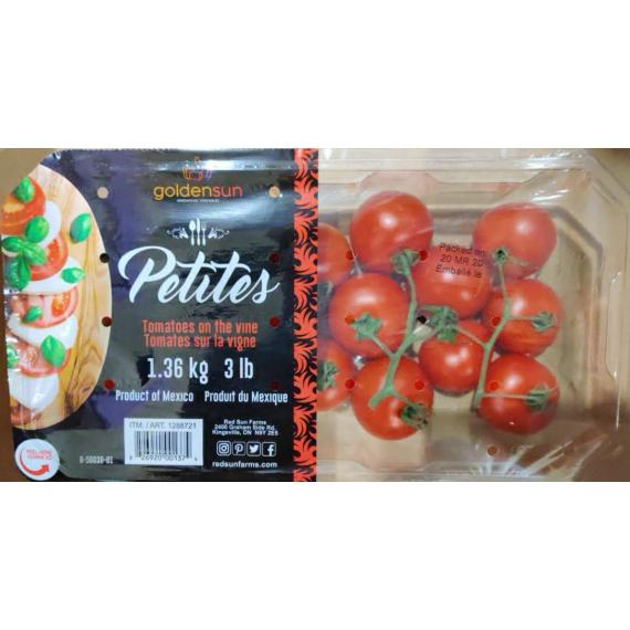 Goldensun Tomato on the Vine, 1.36 kg (3lb)