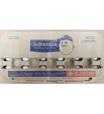 BURNBRAE Fermes - Extra Large Œufs, Boite de 18 unités