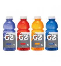 Gatorade G2 Boisson Sportif 28 x 591 ml