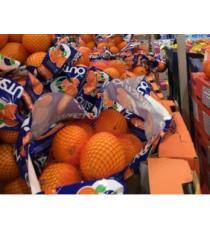 Oranges - Produit des États-Unis- 2.27 kg / 5 lb