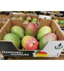 Mangue rouge, produit du Brésil, 6 pièces