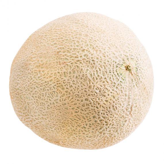 Cantaloup