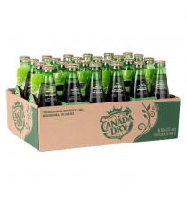 Canada Dry Ginger Ale Glass Bottles, 24 × 237 mL