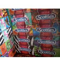 Scotties Premium Tissues 20 boxes